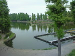別所沼公園、歩道橋の上から。