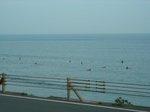 鎌高駅前は、サーフィンが見られる